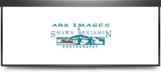 Shawn Benjamin Photography & Ark Images